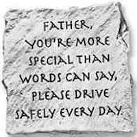Father Your Special  Drive Safely Visor Clip