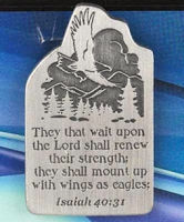 Wings as Eagles Auto Visor Clip